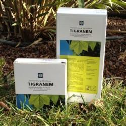 Tigranem - Boîte de 50 millions et 500 millions