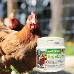 Appicure 300 g