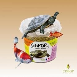 Présentation Crispop