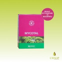 Mycotal - Boîte de 500 g