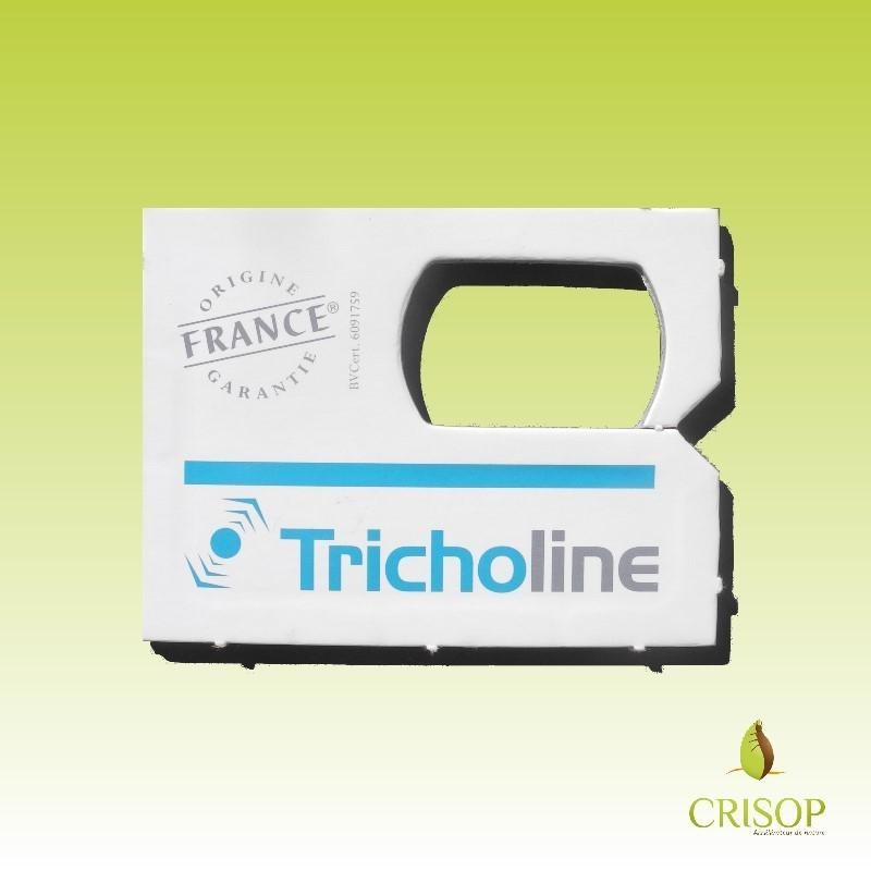 Diffuseur de TrichoLine Buxus